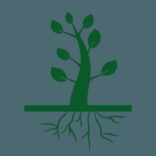 Asigura dezvoltarea unui sistem radicular puternic si sanatos. AGROBION ingrasamant natural are la baza macro si microelemente eficiente, menite sa stimuleze cresterea sanatoasa a plantelor, eliminand dezechilibrele de nutritive.